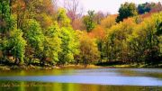 New-Lake-Fall-Pic-by-Misty-Biggers