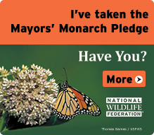 Mayors Monarch Pledge BADGE 2015 219x191 72dpi